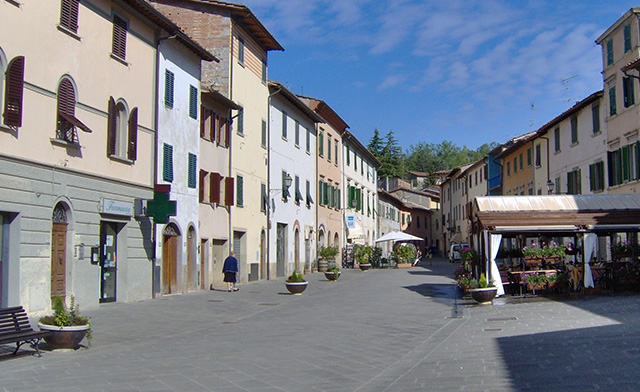 forest_0000_Via_Bettino_Ricasoli_Gaiole_in_Chianti_1